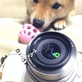 photo-171.JPG