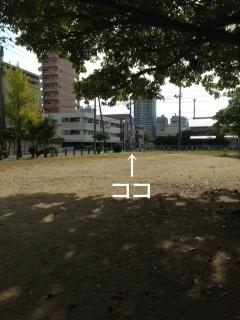photo 1-132.JPG