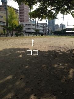 photo 2-124.JPG