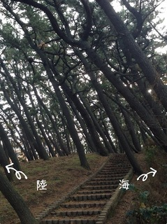 photo 2-246.JPG