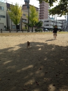photo 4-72.jpg